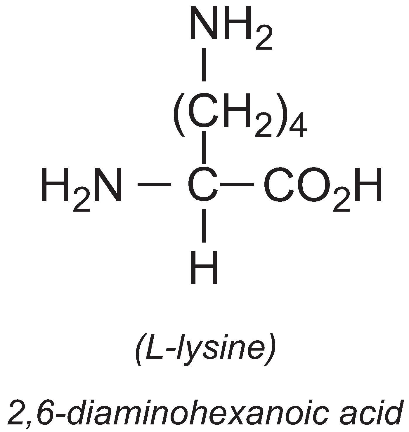 L-Lysine  L Lysine